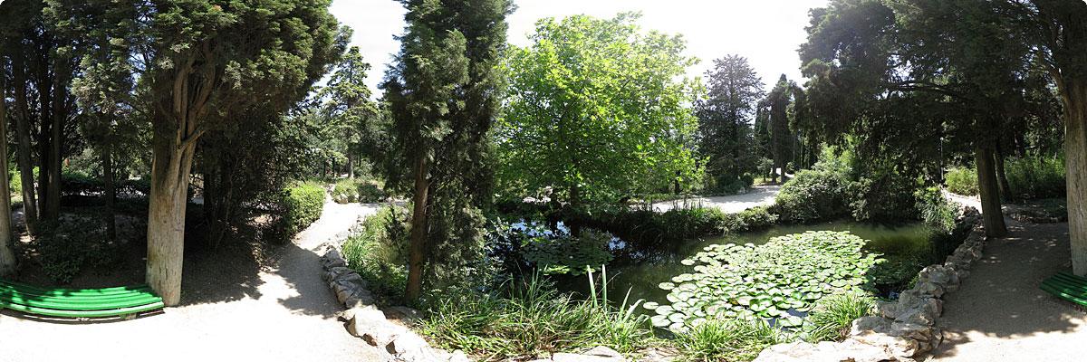 360° панорама «Форосский парк»